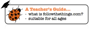 ftt teachers guide button